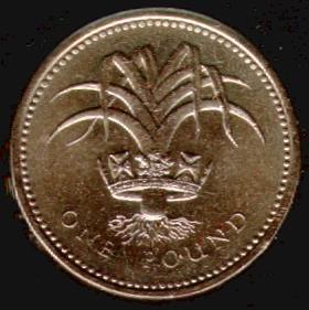 UK Decimal Coins - One Pound
